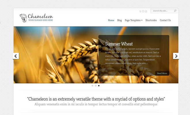 chameleon-responsive-minimal-wordpress-theme