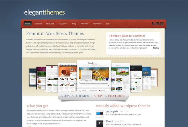 elegantthemes-old-design