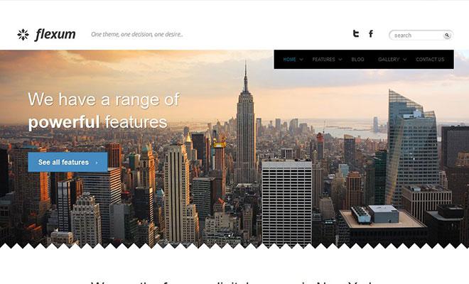 flexum-responsive-wordpress-business-theme