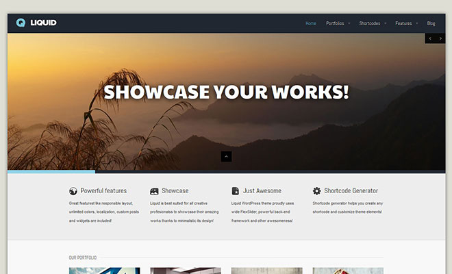 liquid-responsive-wordpress-portfolio-theme