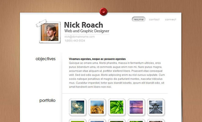 myresume-vcard-wordpress-theme