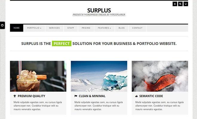 surplus-responsive-wordpress-business-theme