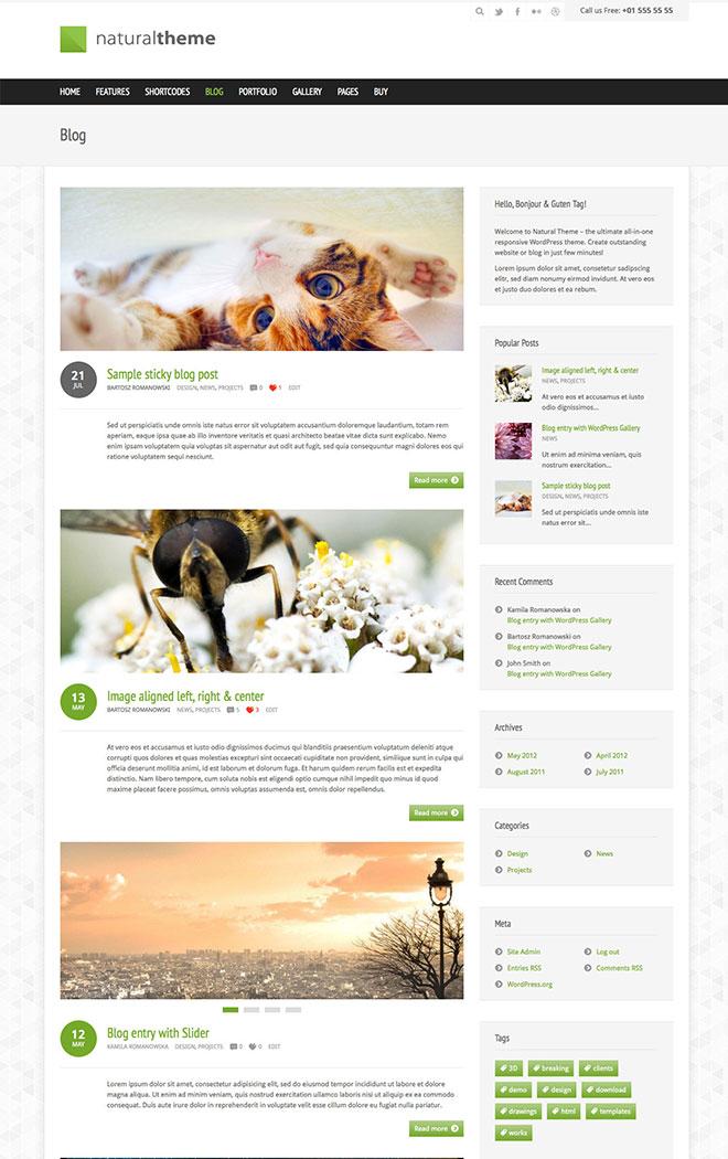 themeforest-natural-wordpress-responsive-business-portfolio-theme-blog-posts