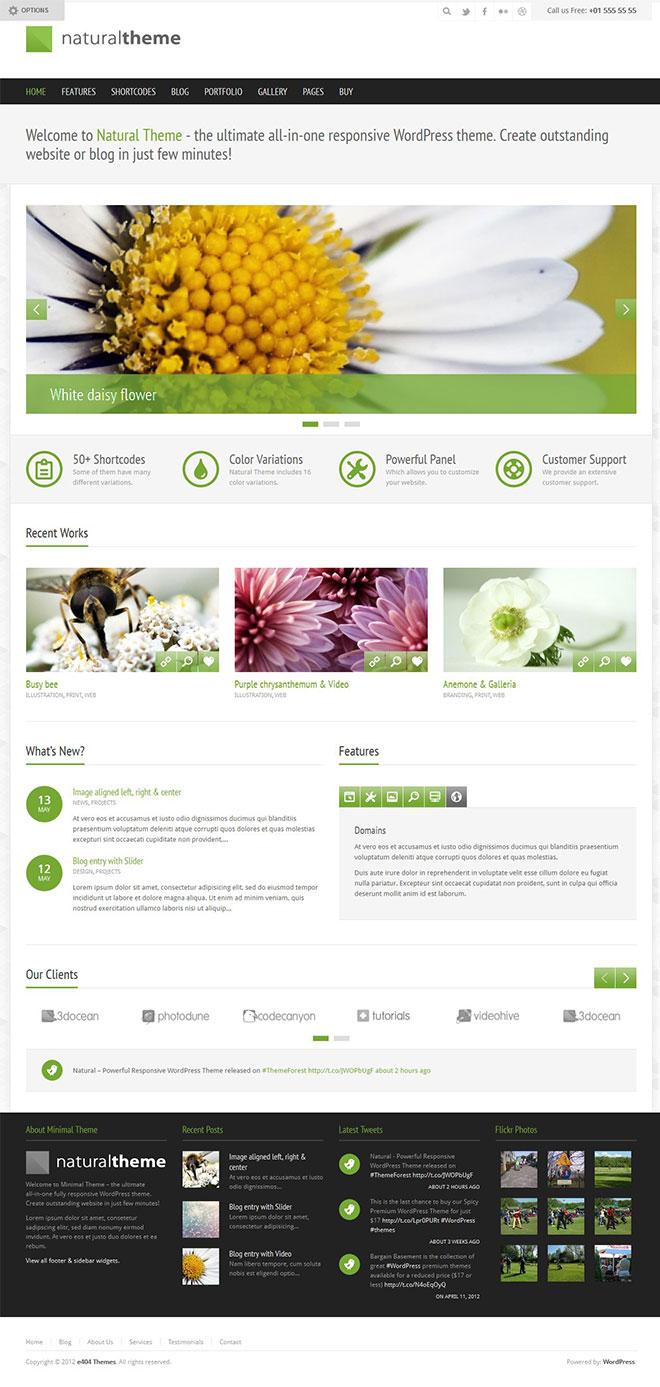 themeforest-natural-wordpress-responsive-business-portfolio-theme