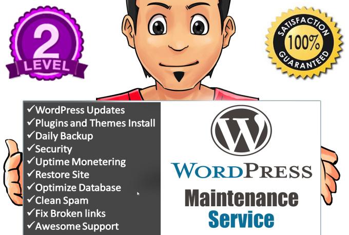 wordpress-maintenance-service